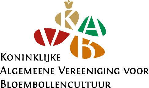 K.A.V.B.